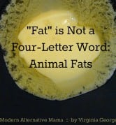 """Fat"" is Not a Four-Letter Word: Animal Fats 