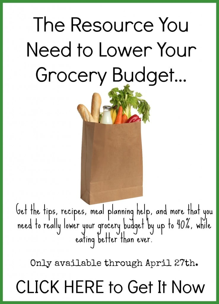 the nourished grocery budget 4